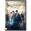 Animais Fantásticos e Onde Habitam (DVD)