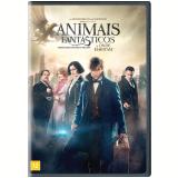 Animais Fantásticos e Onde Habitam (DVD) - Vários (veja lista completa)