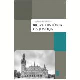 Breve História da Justiça - David Johnston