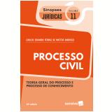 Processo Civil (Vol. 11) - Carlos Eduardo Ferraz De Mattos Barroso