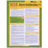 Direito Internacional (Vol. 9)