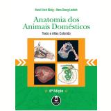 Anatomia Dos Animais Domésticos - Horst Erich König, Hans-Georg Liebich