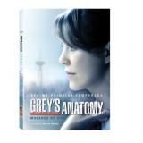 Grey's Anatomy - Decima Primeira Temporada (DVD) - Shonda Rhimes (Diretor)