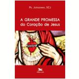 A Grande Promessa do Coração de Jesus - João Carlos (pe. Joãozinho) Almeida