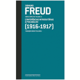 Sigmund Freud (1916-1917, Vol. 13)