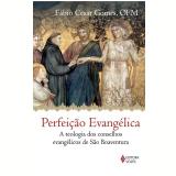 Perfeição Evangélica  - Fábio Cesar Gomes