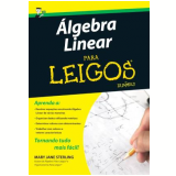 Algebra Linear Para Leigos - Mary Jane Sterling