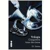 Trilogia Cinquenta Tons de Cinza (Ebook)