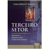 Terceiro Setor - Carla Bertucci Barbieri