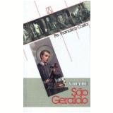 Vida de São Geraldo - Francisco Costa
