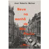 Neve na Manhã de São Paulo - José Roberto Walker