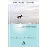 A Alma Indomável - Michael A. Singer