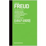 Freud vol 14 (1917-1920)  (Ebook) - Paulo C�sar de Souza