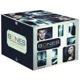 Coleção Bones - 1ª a 6ª Temporada (DVD) - David Boreanaz