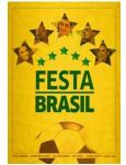 Festa Brasil (DVD)