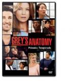 Grey's Anatomy - Primeira Temporada (DVD) - Patrick Dempsey, Sandra Oh, Ellen Pompeo
