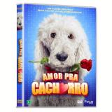 Amor Prá Cachorro (DVD) - Poul Rocha