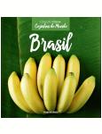 Brasil  (Vol. 28) -