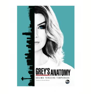 Greys Anatomy - A Décima Terceira Temporada (6 Discos) (DVD)