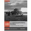 A Contraofensiva Aliada (Vol. 15)