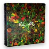 Box Villa-Lobos (CD) - Quarteto Bessler-reis E Quarteto Amazônia