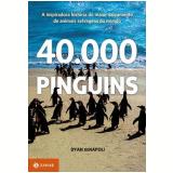 40.000 Pinguins - Dyan Denapoli
