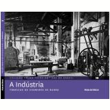 A Indústria (Vol.10)