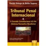 Tribunal Penal Internacional E A Ec 45/04 - Eneida Orbage De Britto Taquary