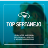 Top Sertanejo (CD)