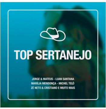 Top Sertanejo (CD)