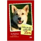 Lições de Vida de um Cão Chamado Lava - Jay Kopelman