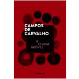 A Chuva Imóvel - Campos de Carvalho