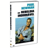 Rebeldia Indomável (DVD) - George Kennedy, Paul Newman