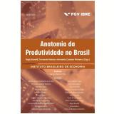 Anatomia da Produtividade No Brasil - Fernando Veloso