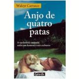 Anjo de Quatro Patas - Walcyr Carrasco